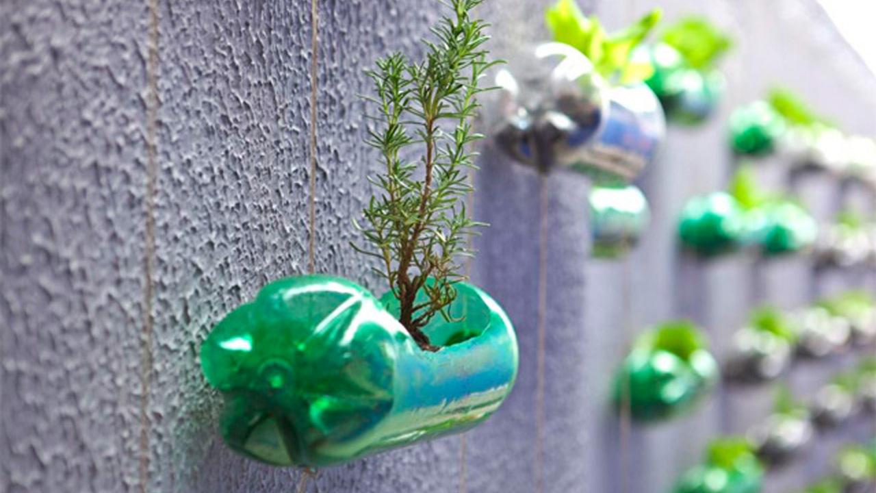 Come riutilizzare le bottiglie di plastica? Creando un giardino